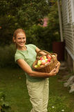 Girl with basket apples against green grass. Stock Photography