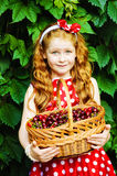 Girl with a basket of cherries. Girl in a beautiful dress with a basket of cherries Stock Photos