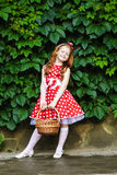 Girl with a basket of cherries. Girl in a beautiful dress with a basket of cherries Royalty Free Stock Photo