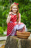 Girl with a basket of cherries. Girl in a beautiful dress with a basket of cherries Stock Image
