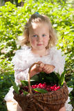 Girl with basket of cherries Royalty Free Stock Image