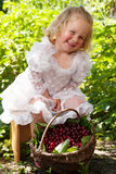 Girl with basket of cherries Royalty Free Stock Photos