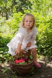 Girl with basket of cherries Stock Images
