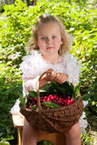 Girl with basket of cherries Stock Image
