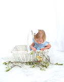 Girl in Basket with Chicken Royalty Free Stock Photography