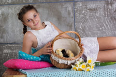 Girl with basket full of chicks Royalty Free Stock Photo