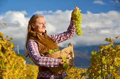 Girl with a basket full of grapes Stock Images