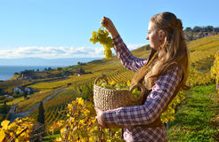 Girl with a basket full of grapes Royalty Free Stock Photos
