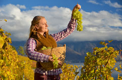 Girl with a basket full of grapes Royalty Free Stock Images