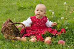 Girl and a basket Stock Photos