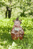 Girl with a basket of mushrooms Royalty Free Stock Photography