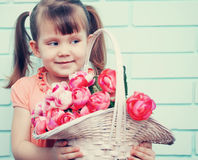 Girl with a basket, tinted Royalty Free Stock Photography