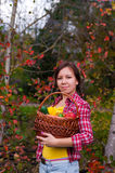 Girl with basket of vegetables Royalty Free Stock Photography