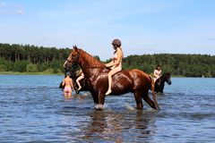 Girl bathe horse in the lake. Royalty Free Stock Photography