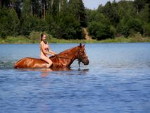 Girl bathe horse in the lake. Royalty Free Stock Photo