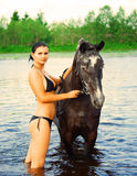 Girl bathe horse in a river Royalty Free Stock Image