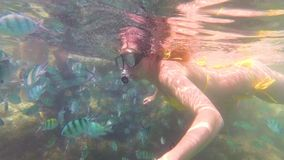 Girl bathe in the sea with fish. Scuba diving in masks. Girlswim in the sea with fish. Snorkelling stock footage
