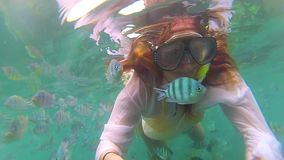 Girl bathe in the sea with fish. Scuba Diving in Masks. PHANGAN, THAILAND. Girl swim in the sea with fish. Snorkelling stock video