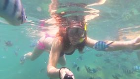 Girl bathe in the sea with fish. Scuba Diving in Masks. PHANGAN, THAILAND. Girl swim in the sea with fish. Snorkelling stock video footage