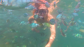 Girl bathe in the sea with fish. Scuba Diving in Masks Stock Image