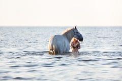 Girl bathing white horse Royalty Free Stock Images