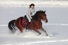 Girl and bay stallion - riding horseback in snow field Royalty Free Stock Photography