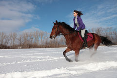 Girl and bay stallion - riding horseback in snow field Stock Image