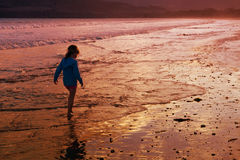 Girl beach walking. A little girl walking on the beach at sunset Stock Image