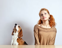 Girl  and  beagle Royalty Free Stock Photos
