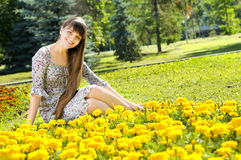 Girl beautiful. The young beautiful woman, sits on a beautiful lawn, many yellow colors, a sunny day, smiles...  Profile Adobe RGB (1998 Stock Photography