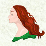 Girl. Beautiful girl with chestnut hair royalty free illustration