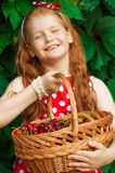 Girl in a beautiful dress with a basket Stock Images