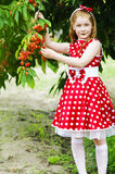 Girl in a beautiful dress in garden. Girl in a beautiful dress in cherry garden Royalty Free Stock Photo