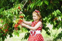 Girl in a beautiful dress in garden Royalty Free Stock Photography