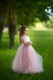 Girl in a beautiful dress Royalty Free Stock Photography