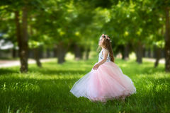 Girl in a beautiful dress Royalty Free Stock Images