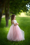 Girl in a beautiful dress Royalty Free Stock Photo