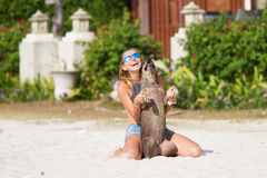 The girl beautiful in jeans shorts and an undershirt also gatsya with dogs, game with dogs on the beach. Royalty Free Stock Photography