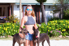 The girl beautiful in jeans shorts and an undershirt also gatsya with dogs, game with dogs on the beach. Royalty Free Stock Image
