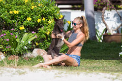 The girl beautiful in jeans shorts and an undershirt also gatsya with dogs, game with dogs on the beach. Royalty Free Stock Photos
