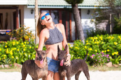 The girl beautiful in jeans shorts and an undershirt also gatsya with dogs, game with dogs on the beach. Royalty Free Stock Photo