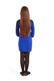 Girl with beautiful natural brown hair Royalty Free Stock Photos