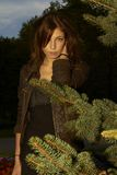 The girl behind the fir branches Stock Image