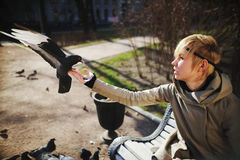 Girl on a bench feeding pigeons from hands Royalty Free Stock Photo