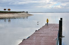 Girl at the berth. Lake and ducks stock image