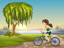 A girl and bicycle Stock Images