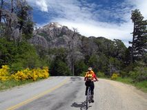 Girl on a bicycle. Girl riding a bicycle - Bariloche - Argentina royalty free stock image