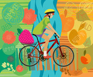 Girl on a bicycle. Summer. Autumn. Vector illustration. In the trunk of strawberries Royalty Free Stock Photography