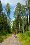 Girl on the bicycle between tall trees Stock Photo