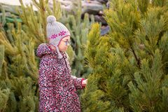 Girl with big glasses and gray and purple hat looking at green christmas tree stock photo